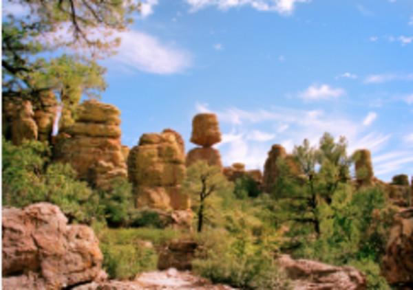 Chiricahua Monument