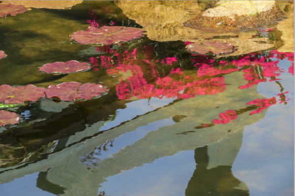 from Reflections series