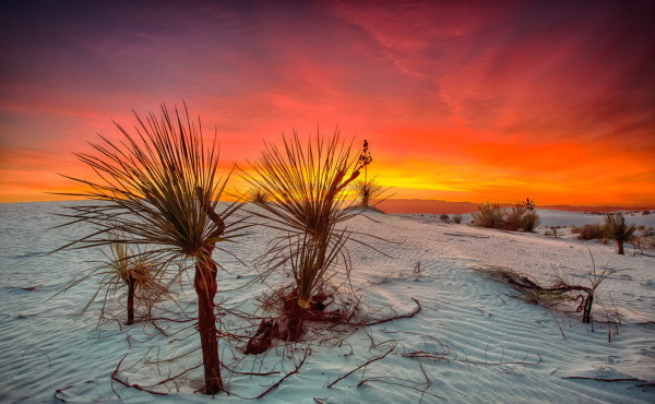 Sunrise, White Sands National Monument