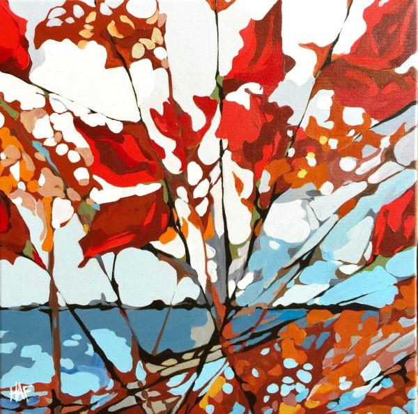 Red Poplar on Lake
