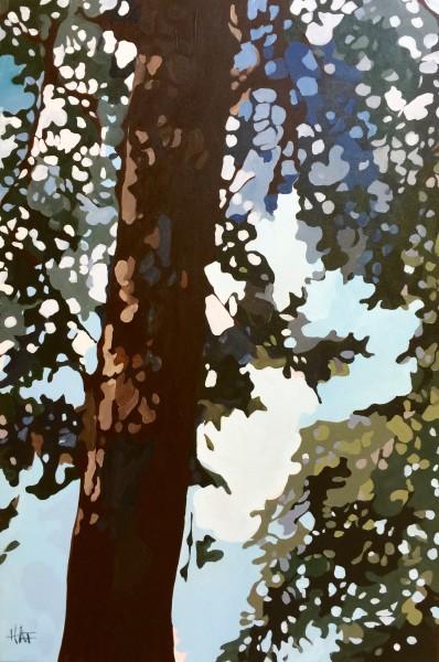 Pine Fall 3