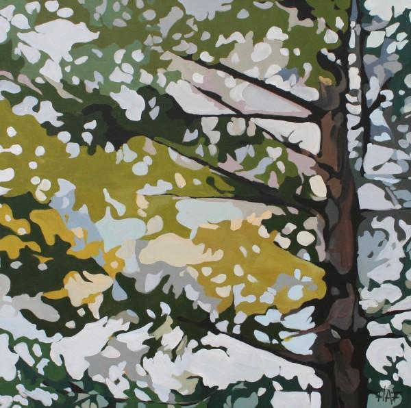 Pine Fall 2