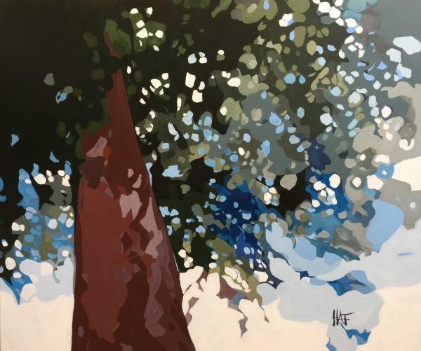 Pine Fall 4