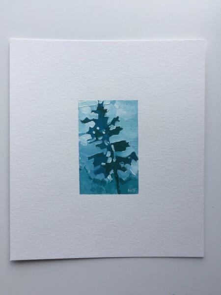 pine sketch