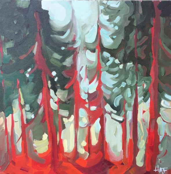 Warm Pine