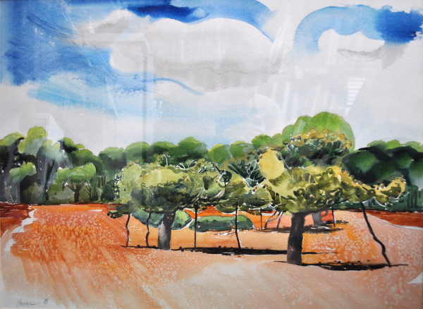 Untitled (Provence, Almond Grove)