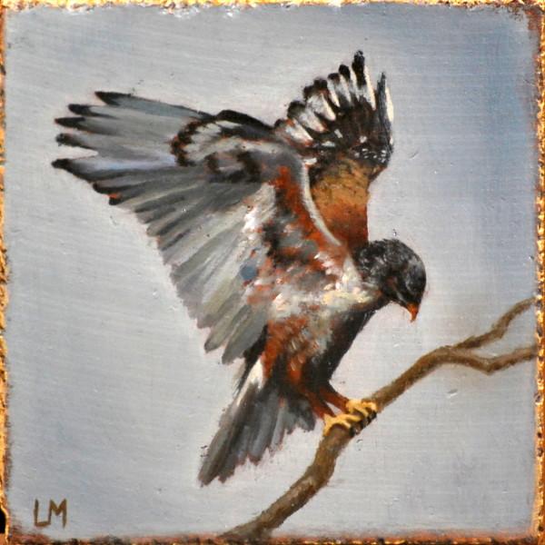 Redtail Hawk Tile