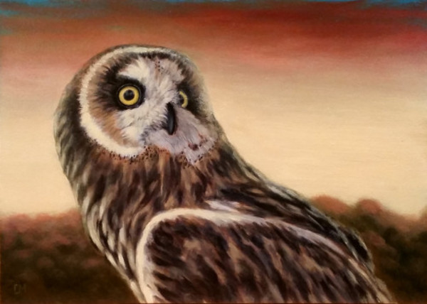 Owl at Sunset - SOLD