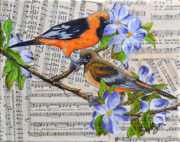 Songbird - Oriole