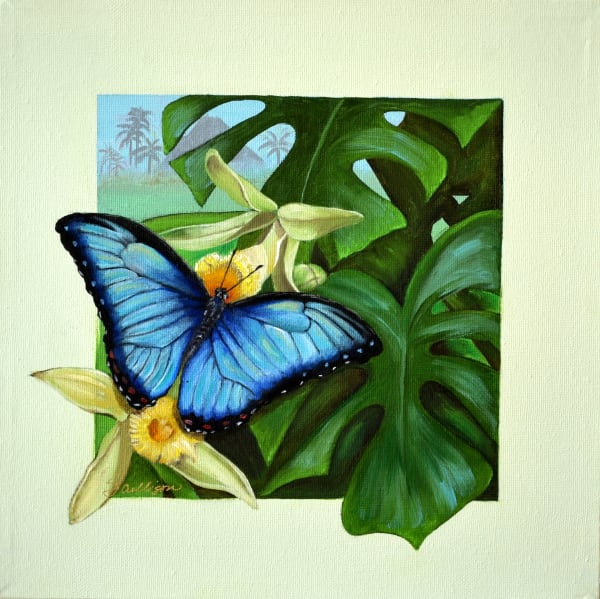 Tropical Blue Morpho
