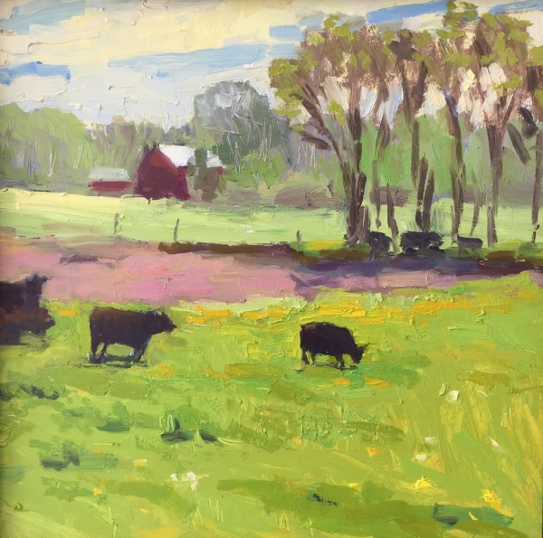 Cows in the Pasture at Dan youngs