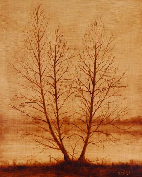 Tree Portrait: Three as One (Sepia Study)