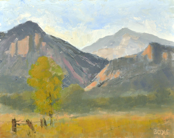 Colorado Paint Out - Plein Air