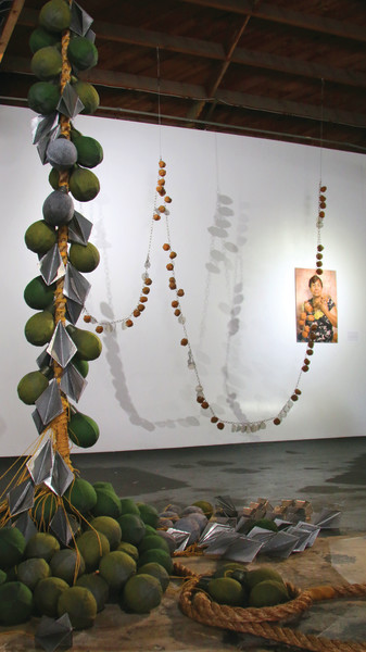 Force of Nature: installation view