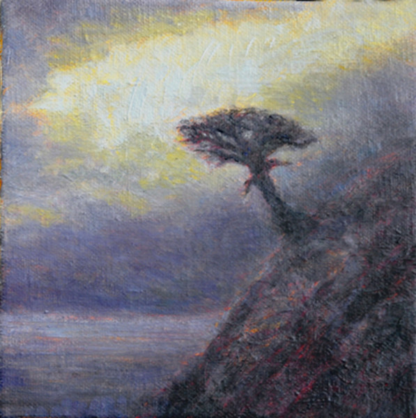 Coastal Pines Overlook II