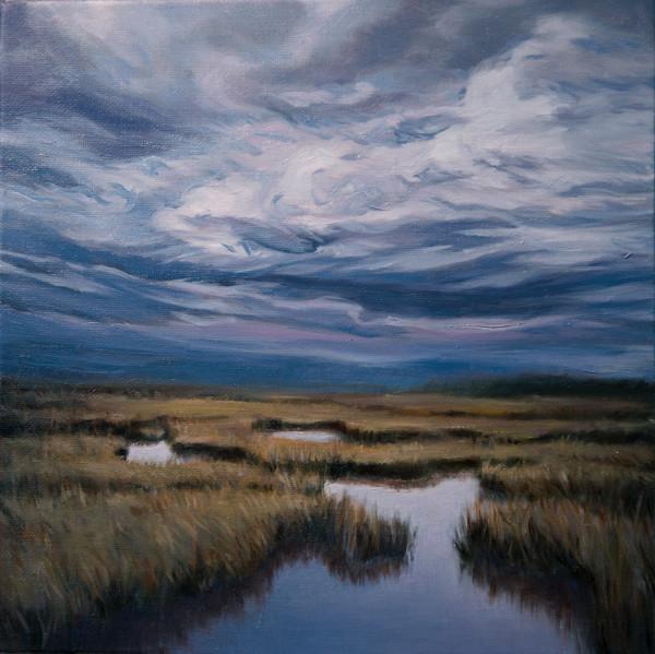 Marsh Labyrinth 3