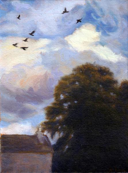 Sky Gazing Behind Lindsaylands