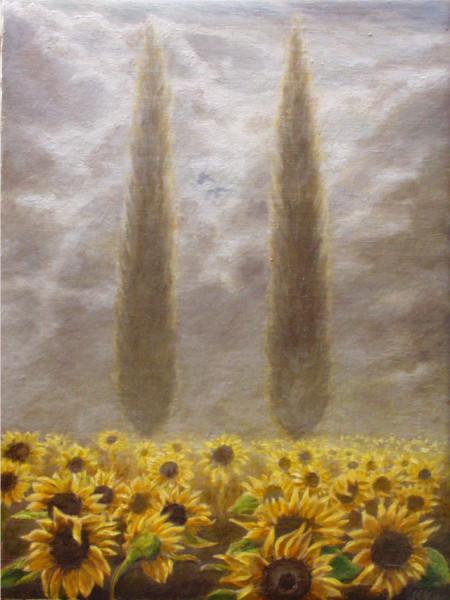 Shirley's Sunflowers