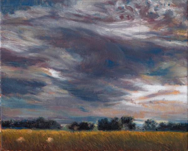 Scotland Clouds, Field, Sheep Study