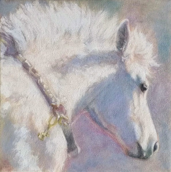 white-foal-oil-study-web_p1ors1_2