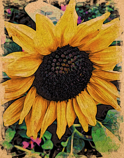 Sunflower, Japanese Woodcut Style