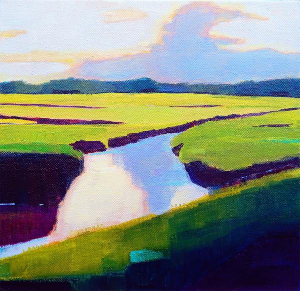 Chincoteague Marshes