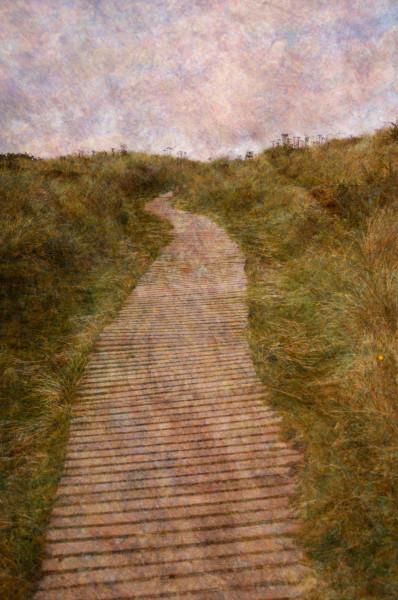 Findhorn Dunes