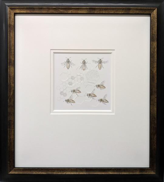 Study of a  HoneyBee 005