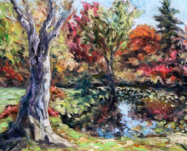 Autumn Afternoon Japanese Gardens Mayne Island BC