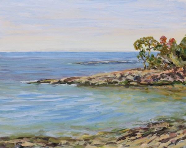 David Cove Mayne Island B.C.