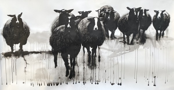 Zwartbles flock