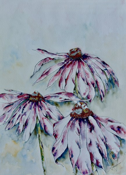 Cone Flower Patch | Original Artwork | 11x15