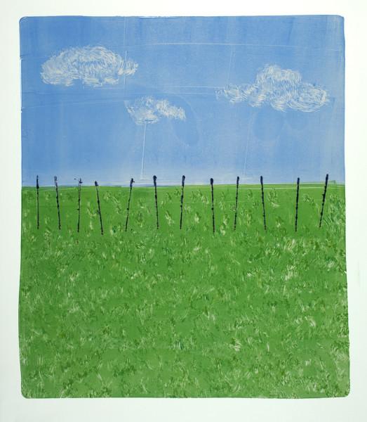 Fence, Sky, Grass
