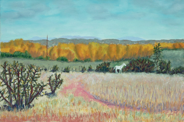 Galisteo Meadow