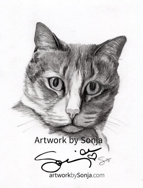 Cat Memorial Pet Portrait