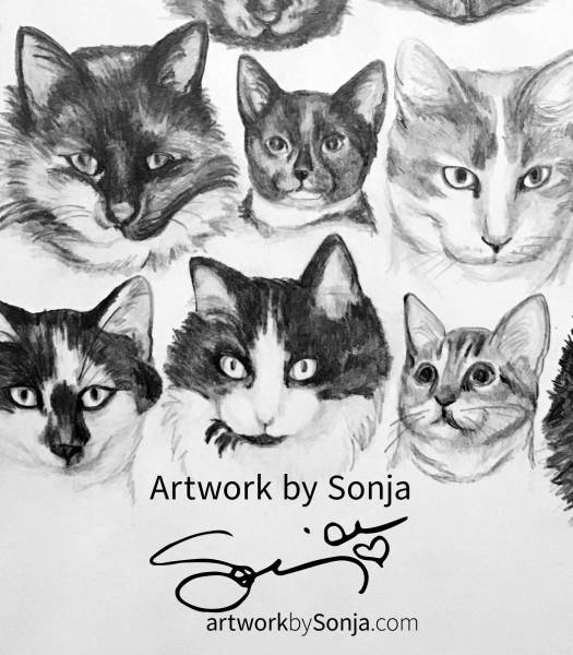History of Cats Portrait by Sonja