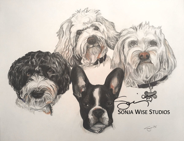 Four Dogs Pet Portrait