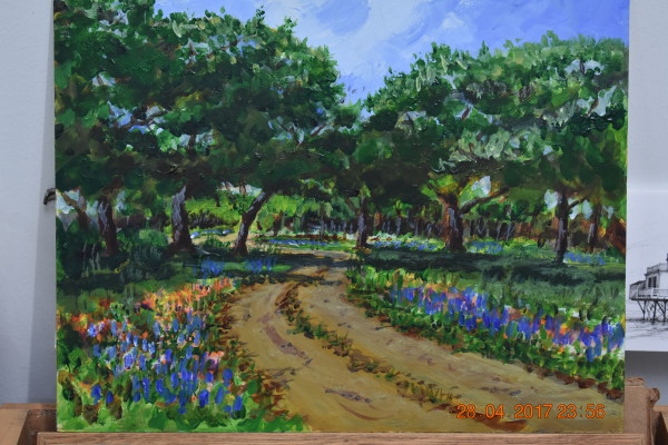 Texas Hill Country road in spring