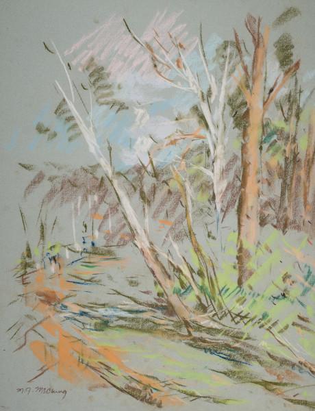 White Trees on the Mountain Brook Parkway
