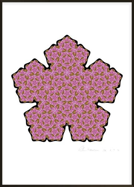 Pen-Rose Tiling I #3 of 8