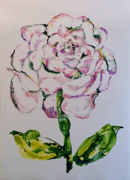 Big Rose