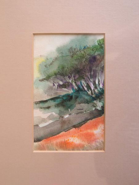 Coast Trees