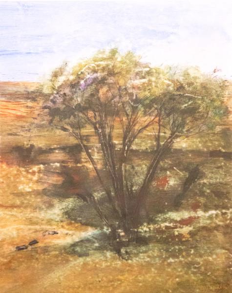 Tree Camp 1