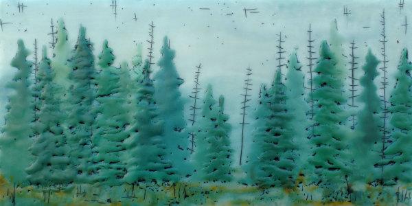 Quiet Forest No 60