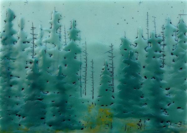 Quiet Forest No 61