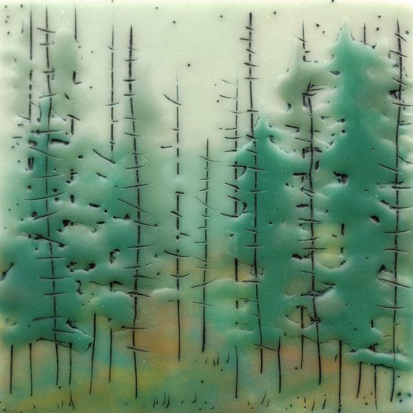 Quiet Forest no. 72