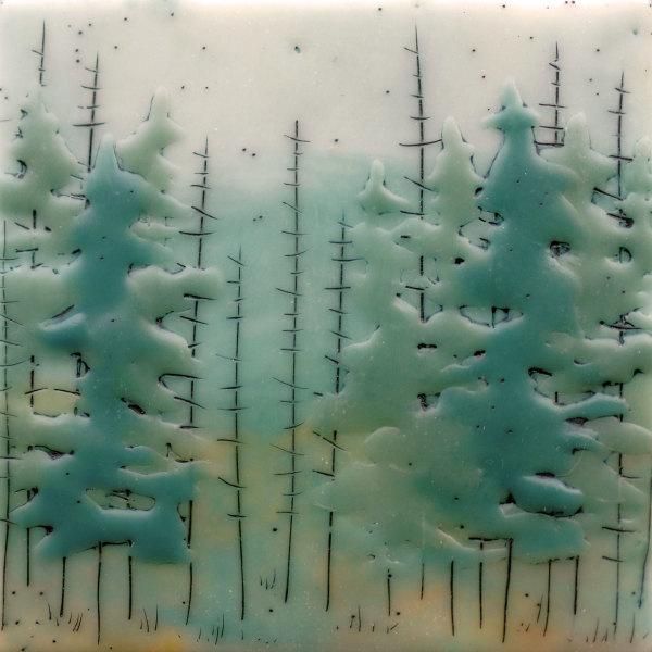 Quiet Forest no. 73