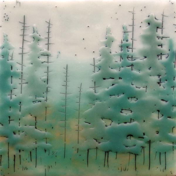 Quiet Forest no. 75