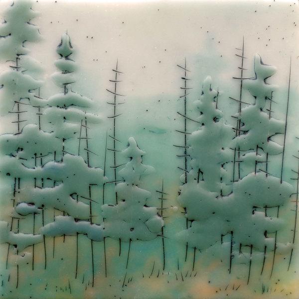 Quiet Forest no. 76