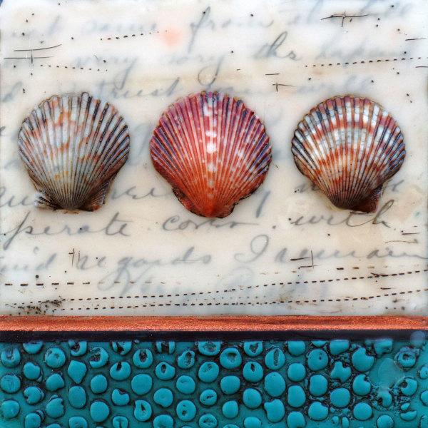 Shells & Words No 3